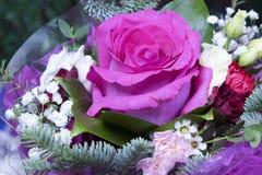 Rose dans de bouquet toujours une vie dans le jour ensoleillé Photographie stock libre de droits
