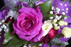 Rose dans de bouquet toujours une vie dans le jour ensoleillé Images libres de droits