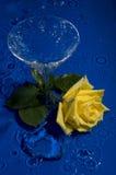 Rose dans l'eau Photographie stock libre de droits