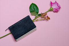 Rose dans un carnet Photo stock