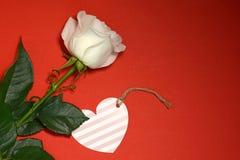 Rose de blanc et carte de coeur sur le fond rouge Photos libres de droits