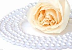 Rose de blanc et collier de perle Photos libres de droits