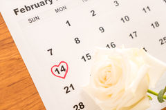 rose de blanc sur le calendrier avec la date du 14 février Valentin Photos stock