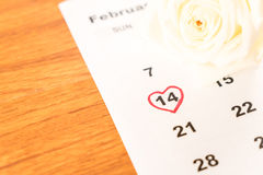 rose de blanc sur le calendrier avec la date du 14 février Valentin Image libre de droits