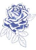 Rose de bleu Images libres de droits
