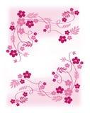 rose de fleurs Image libre de droits