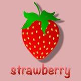 Rose de fraise Images libres de droits