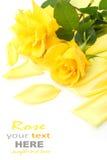 Rose de jaune Photos stock