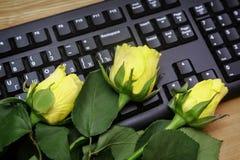 Rose de jaune sur le clavier d'ordinateur Images stock