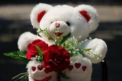 Rose de l'amour Photos stock