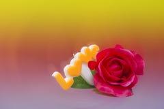 Rose de l'amour après tache floue lumineuse de contexte de vintage Photos libres de droits