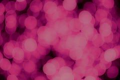 Rose de Noël et de nouvelle année et fond pourpre de lumières de bokeh photo libre de droits