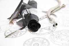 Rose de noir Photographie stock libre de droits