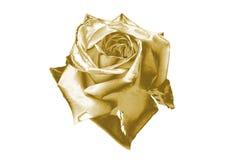 Rose de oro Imagenes de archivo