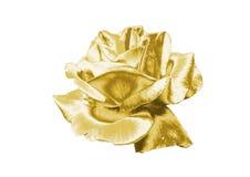Rose de oro Fotos de archivo