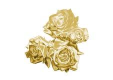 Rose de oro Fotografía de archivo
