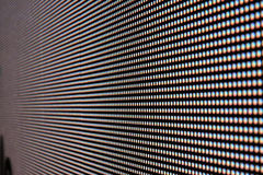 Rose de photo d'écran de LED Photo stock