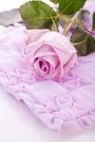 Rose de pourpre pour épouser l'amour Photo stock