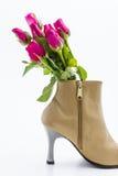 Rose de rose Photos libres de droits