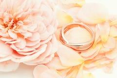 Rose de rose avec l'anneau Image libre de droits