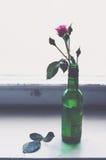 Rose de rose dans une bouteille verte sur le vieux filon-couche en bois de fenêtre Photographie stock libre de droits