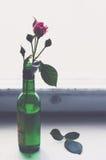 Rose de rose dans une bouteille verte sur le vieux rebord de fenêtre en bois Image libre de droits
