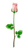 Rose de rose de tige et feuilles sur un fond blanc Illu de vecteur Images libres de droits