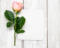 Rose de rose et carte de voeux Photographie stock libre de droits