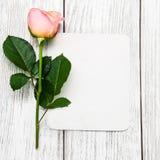 Rose de rose et carte de voeux Photo stock