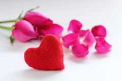 Rose de rose pour le festival d'amour Photos libres de droits