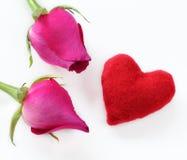 Rose de rose pour le festival d'amour Photo stock