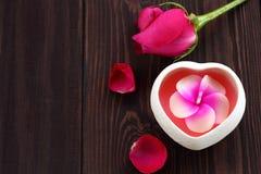 Rose de rose pour le festival d'amour Images stock
