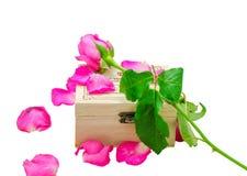 Rose de rose sur peu de boîte en bois Photographie stock libre de droits