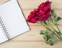 Rose 16 de rouge Images stock