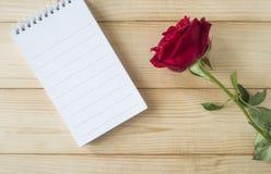 Rose 18 de rouge Photographie stock