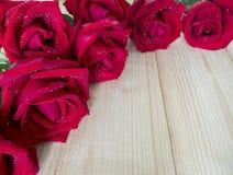 Rose 20 de rouge Images libres de droits