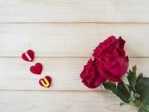Rose 25 de rouge Photographie stock