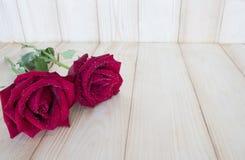 Rose 33 de rouge Photos libres de droits