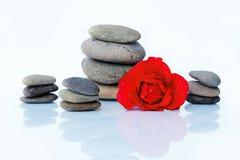 Rose de rouge avec des baisses et des pierres de l'eau Image stock