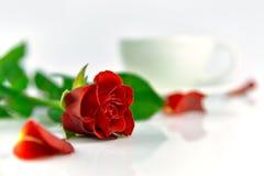 Rose de rouge avec la tasse de café pendant le matin Photographie stock libre de droits
