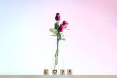 Rose de rouge avec le coeur et l'alphabet en bois Photos stock