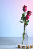 Rose de rouge avec le coeur et l'alphabet en bois Images stock