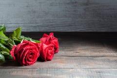 Rose de rouge avec le plan rapproché extrême de gouttelettes d'eau avec l'espace de copie Image libre de droits