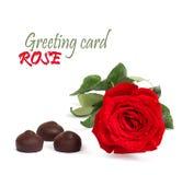 Rose de rouge avec les feuilles et le chocolat de vert Photographie stock libre de droits