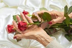 Rose de rouge dans des mains supérieures de femme Images stock
