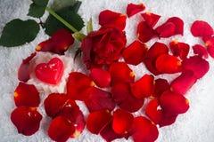 Rose de rouge dans la neige avec la bougie de coeur avec des pétales Photographie stock libre de droits