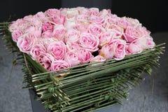 Rose de rouge dans le jardin Photos stock
