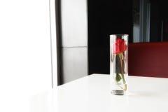 Rose de rouge dans un verre Photographie stock libre de droits