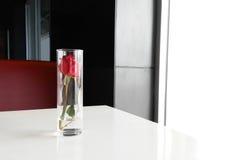 Rose de rouge dans une tasse en verre placée sur la table Image libre de droits
