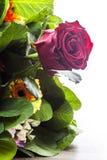 Rose de rouge de bouquet Photographie stock libre de droits